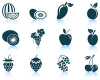 Set of fruit icon Royalty Free Stock Image