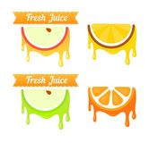 Set of Fruit Icons Royalty Free Stock Image