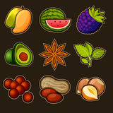 Set of fruit icons Stock Photos