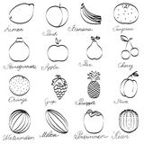 Set fruit icons hand-drawn. Monochrome Collection with inscriptions isolated on a white background. Royalty Free Stock Images