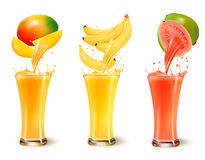Set of fruit juice splash in a glass. Mango, banana and guava. Vector Stock Images
