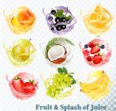 Set of fruit juice splash Royalty Free Stock Photography