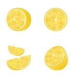 Set of Fruit Lemons  Royalty Free Stock Images