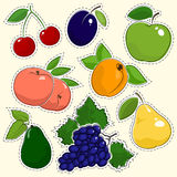 Set of Fruit Stickers Royalty Free Stock Photography