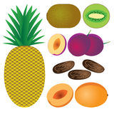 Set of fruits. Royalty Free Stock Photography