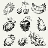Set of fruits Royalty Free Stock Photo