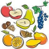 Set of fruits, apple, pear, mango, orange,  vector Royalty Free Stock Photo