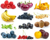 Set of fruits, berries, vegetables & mushrooms. Set of fruits, berries, vegetables and mushrooms of different colours isolated on the white background Stock Image