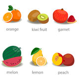 Set of fruits. Flat style. Set of fruits. Orange, pomegranate, lemon watermelon peach pomegranate Stock Photography