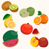 Set of fruits. Flat style. Set of fruits. Orange, pomegranate, lemon watermelon peach pomegranate vector illustration