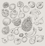Set of fruits. Freehand drawing. Stock Images