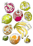 Set of fruits. Freehand drawing. Royalty Free Stock Image