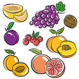 Set of fruits, grapes,melon,apricot,peach,  Royalty Free Stock Photo