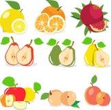 Set of fruits, lemon, apple, orange, pomegranate, pear, apricot, peach, vector illustration. Stock Photos