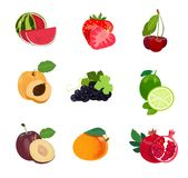 Set of fruits royalty free illustration