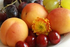 Set of  fruits macro Royalty Free Stock Photo