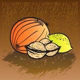 Set of Fruits - Melon, Walnuts, Lemon. Set of Fruits - Melon, Walnuts and Lemon. Handdrawn / Digital Illustration. Available in Vector Format (EPS Stock Images