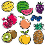 Set of fruits, melon, watermelon, blackberry Stock Photo