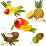 Set fruits Stock Images