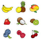 A set of fruits. Vector illustration. Summer.  Royalty Free Stock Photo