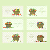 Set of fruits and vegetables labels Stock Photos
