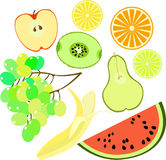 Set of fruits watermelon, orange, kiwi, grapes, banana, pear, ap Royalty Free Stock Photography