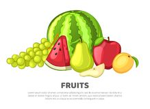Set of fruits on white background. The cartoon style. Bright vector illustration stock illustration