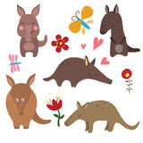 Set funny aardvarks. Set of different aardvarks on white background Royalty Free Stock Image