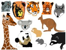 Set of funny animals Royalty Free Stock Photo
