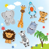 Set of funny animals from Africa. Giraffe, lion, tiger, elephant, Zebra, parrot in the background of blue sky and palm trees Stock Photography