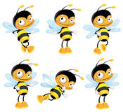 Set funny bee. Illustration of a set funny bee Royalty Free Stock Photo