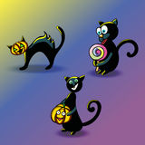 A set of funny black cats to celebrate Halloween Royalty Free Stock Images