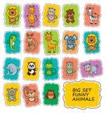 Set Funny Cartoon Animals Royalty Free Stock Images