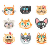 Set of funny cartoon cats heads. Cats different breeds colorful character vector Illustrations Stock Photography