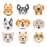 Set of funny cartoon dogs heads. Dogs of different breeds colorful character vector Illustrations Royalty Free Stock Images