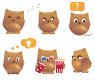 Set of funny cartoon owls. Cute birds Royalty Free Stock Photography