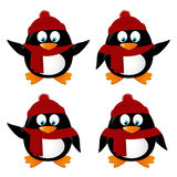 Set of funny cartoon penguins Royalty Free Stock Images