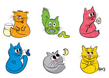 A set of funny cats Royalty Free Stock Image
