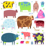 Set of funny cows Stock Photography