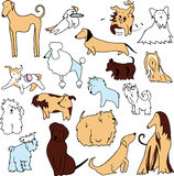Set of funny dogs Stock Images