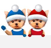 Set of Funny Dogs wearing ski hat hiding behind banner. New Year and Christmas concept. Realistic 3D illustration Royalty Free Stock Images