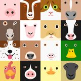 Set of funny farm animals face in square. Colorful and humorous stock illustration