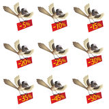 Set of funny flying birds with information about d. Set of nine funny flying birds with information about discount royalty free illustration