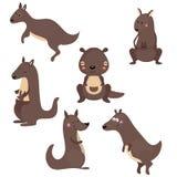 Set funny kangaroos Stock Image
