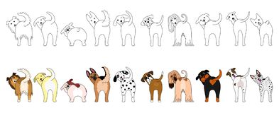 Set of funny large dogs showing their butts. Set of funny large dogs with and without colors showing their butts vector illustration