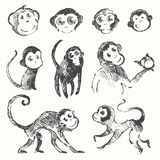 Set funny monkey new year Chinese drawn sketch Royalty Free Stock Photography