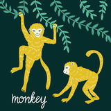 Set of funny monkeys in different poses. Vector hand drawn illustration. royalty free illustration