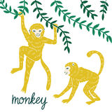 Set of funny monkeys in different poses. Vector hand drawn illustration. vector illustration