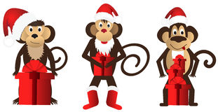 Set funny monkeys with a gift. Royalty Free Stock Photos