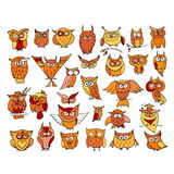 Set of funny owl collection for your design Royalty Free Stock Images